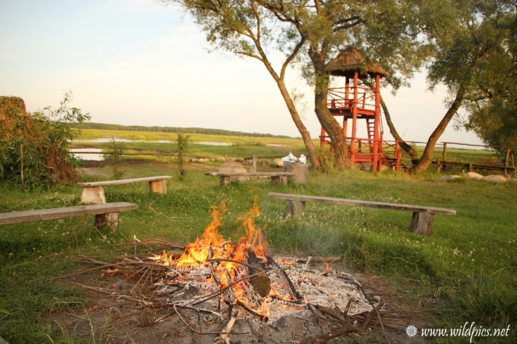 The campsites in the Biebrza River bank are full of charm