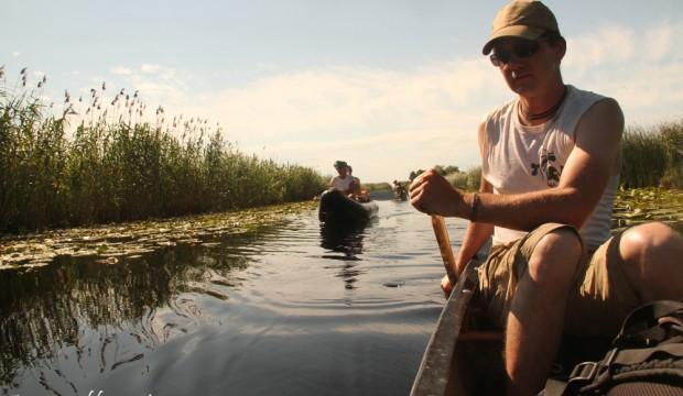 Dans le delta du Danube, immergé dans l'histoire du vivant